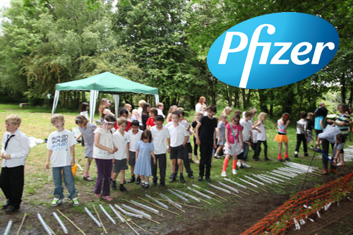 Pfizer at school planting day